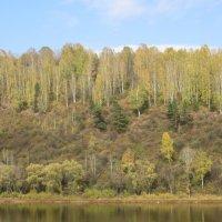 Река Уса, правобережье :: Владимир БОДАГОВ