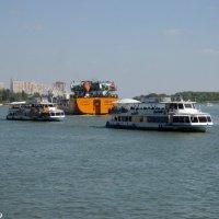 Дон-река и корабли :: Нина Бутко