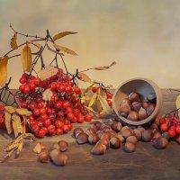 Осенние дары :: Ирина
