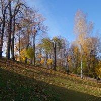 осень в Петергофе :: Елена