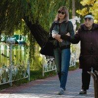 Осенние прогулки. :: barsuk lesnoi