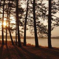Утром на озере :: Галина Кан