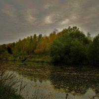На Десне реке листьев половодье... :: ВЛАДИМИР К.