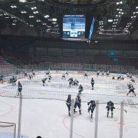 Хоккей :: Митя Дмитрий Митя