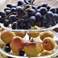 Плоды осени. :: Венера Чуйкова