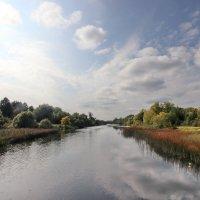 Река Теза. :: Сергей Пиголкин
