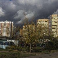 мои окрестности :: Петр Беляков