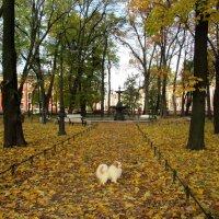 Румянцевский сквер (Соловьевский сад). Фонтан :: Елена Павлова (Смолова)