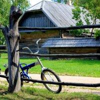 Лето в деревне :: Наталья Лунева