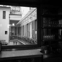 У окна ... :: Лариса Корж
