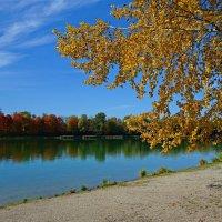 Ах, осень, осень! Чаровница золотая! :: Galina Dzubina