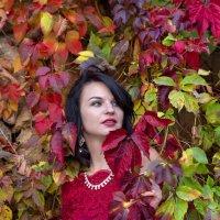 Осень :: Геннадий Б