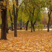 Осень в городе :: Alex .