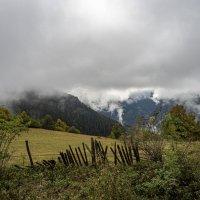 на вершине горы. Кавказские горы. Сванетия :: Лариса Батурова