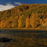 река Кумир :: Salamon2005