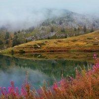 вершины гор укрыл туман :: Elena Wymann