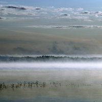 Туман :: Наталья Цветкова
