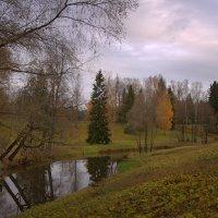 Тихое утро октября :: Наталья