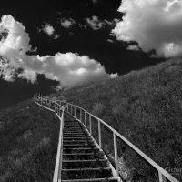 Дорога в небо :: Юрий Губрий