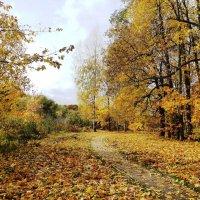Дорожка в осеннем парке :: Лидия Бусурина