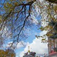 Осень в Лавре :: Нина Синица