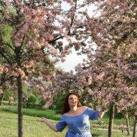 Весеннее цветение :: Людмила Волдыкова