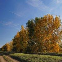 Что такое осень... :: Alex Chernavski