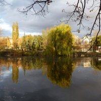 Картина поздней осени в парке :: Лидия Бараблина