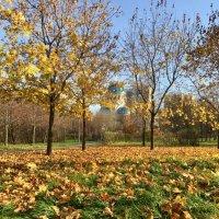 Осенний тон ... :: Лариса Корж