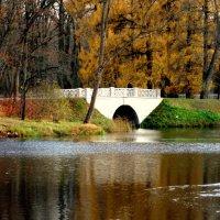 Осенью в парках ЦС - 3 :: Сергей