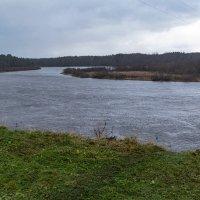 Вид на реку Онега у деревни Машалиха. :: Марина Никулина