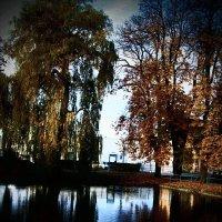 Осень 2 :: Елена Куприянова