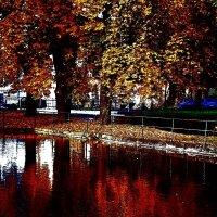 Осень 4 :: Елена Куприянова