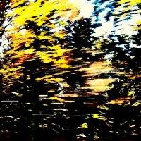 Осень 5 :: Елена Куприянова