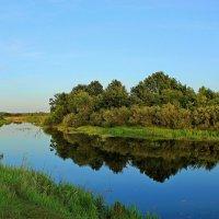 Река Ипуть. :: Сергей
