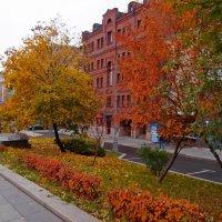 Осень городская :: Alexander Borisovsky