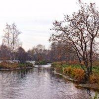 Осенний вечер на речке Черная :: Alexander Borisovsky