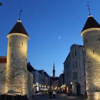 Эстония.Таллин.Вируские ворота :: tina kulikowa