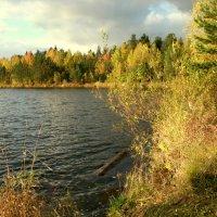 Под  звуки волн и шелест листопада... :: Нэля Лысенко