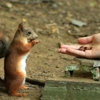 Единение с природой :: Юрий Моченов