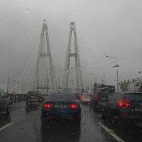 Дождь :: Наталья Герасимова