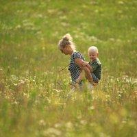 Трава по пояс... :: Юрий Моченов