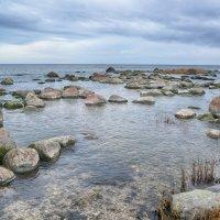 Морские Камушки Тоолсе Эстония :: Priv Arter