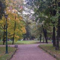 Санкт-Петербург. Таврический сад. :: Лариса (Phinikia) Двойникова