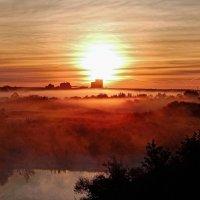 Солнце в тумане! :: Елена Хайдукова  ( Elena Fly )