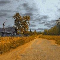 осень по деревням и весям... :: Ирэна Мазакина