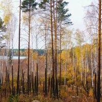 У озера Табанкуль :: Александр Садовский