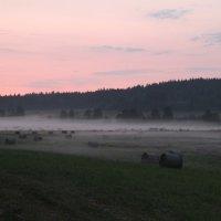 Карельский туман.. :: Себастьян Бах