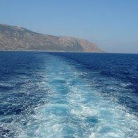 Дорога в море... :: Jelena Volkova