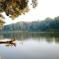 озеро :: Дарина Нагорна